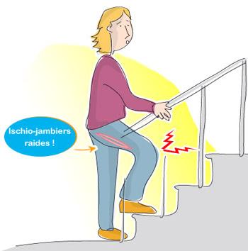 ischio-jambiers raides